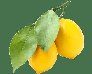 Amalfy lemons